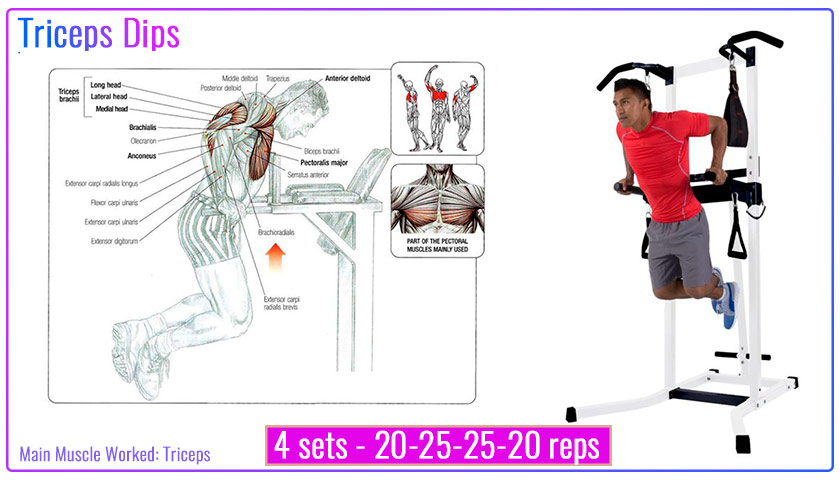 Triceps dips with Power Tower