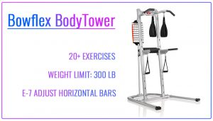 Bowflex BodyTower Review