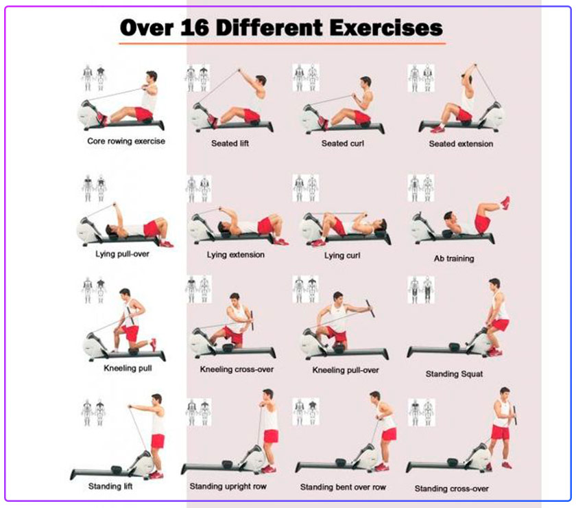 rowing machine exercise calories burned