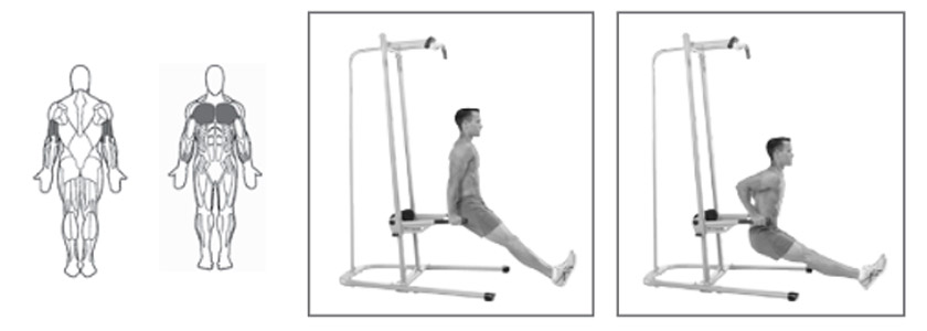 Triceps Dip Assisted
