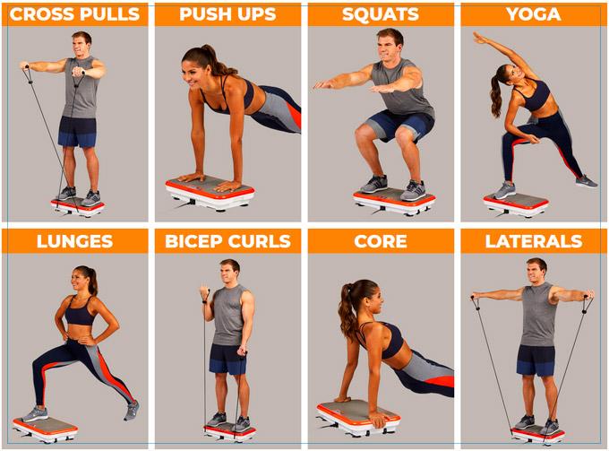 powerfit elite exercises